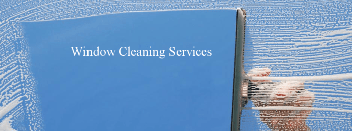 Window Cleaning Santa Barbara By Nancys Services